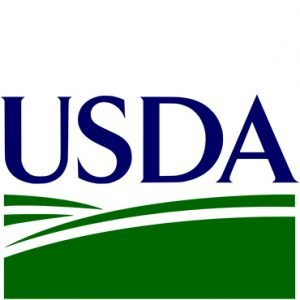 usda mortgage 2019